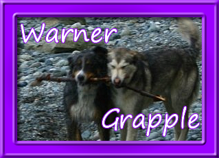 RainbowBridge - Grapple and Warner